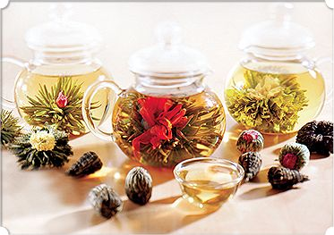 Numi Organic Tea | Flowering Tea™
