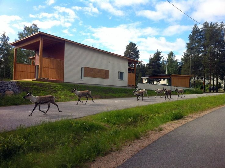 Daily traffic in Rovaniemi in the summer