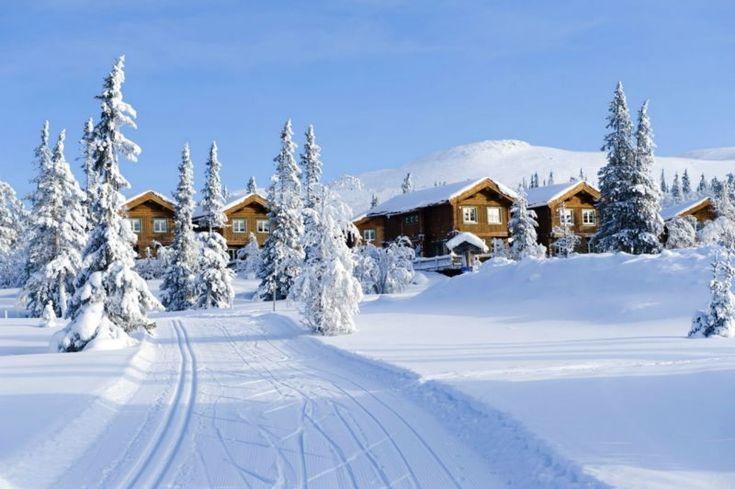 Besök Lofsdalen såväl sommar som vintertid. Här kan ni bo centralt i denna härliga och aktivitetsfyllda skidort.