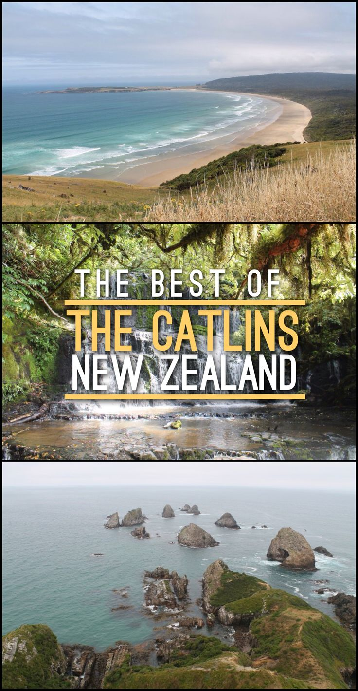 The Catlins, on the east coast of New Zealand's South Island, is home to some of the country's best coastal scenery, including beaches, waterfalls and rugged bays.