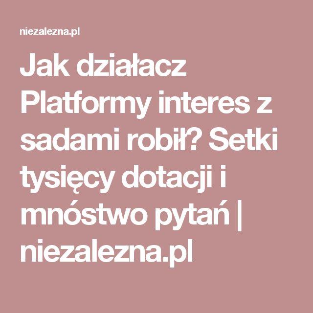 Jak działacz Platformy interes z sadami robił? Setki tysięcy dotacji i mnóstwo pytań | niezalezna.pl