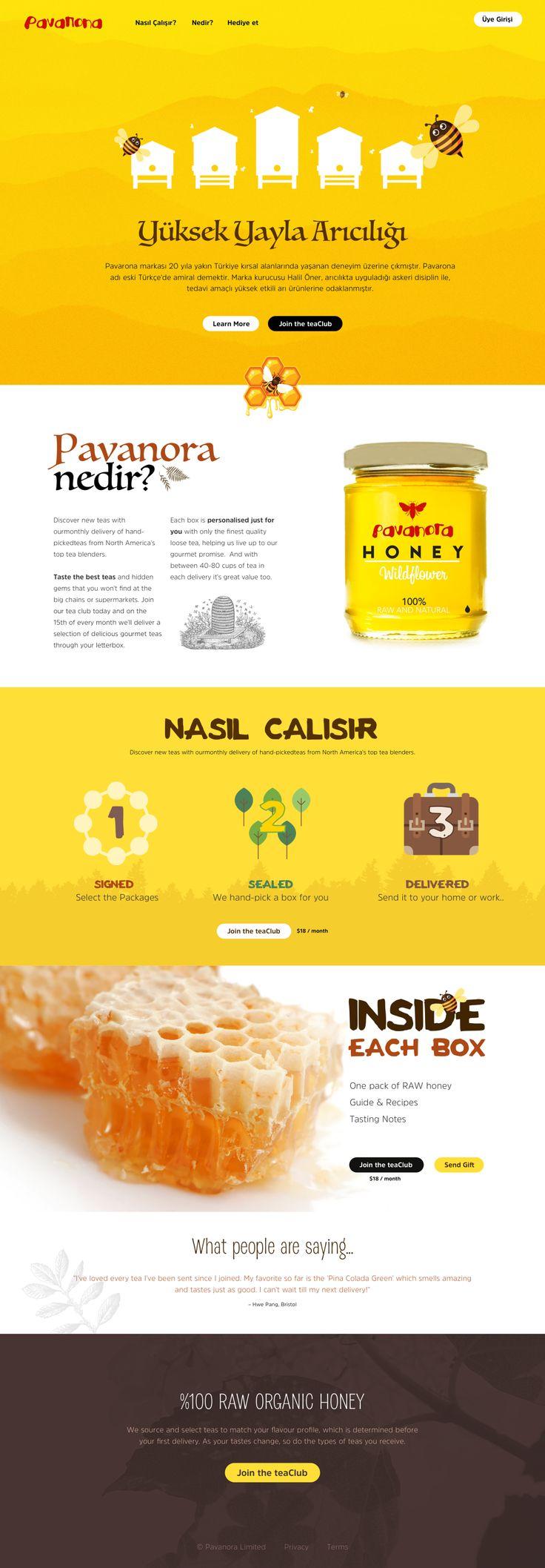 onepage website design