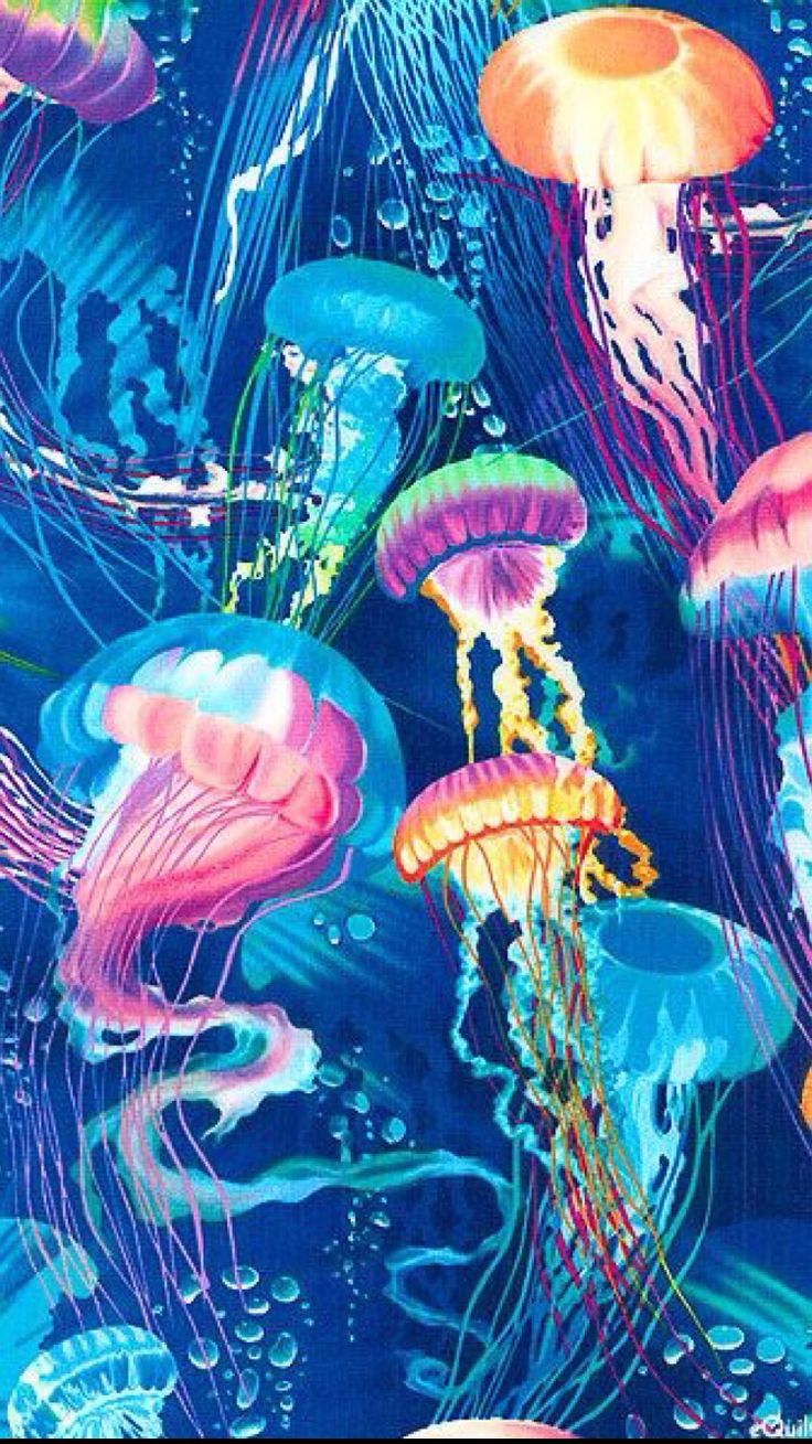 100 ideas to try about acjelly coloring artworks and for Jelly fish art