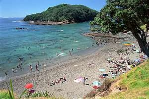 Snorkel at Goat Island, Leigh.