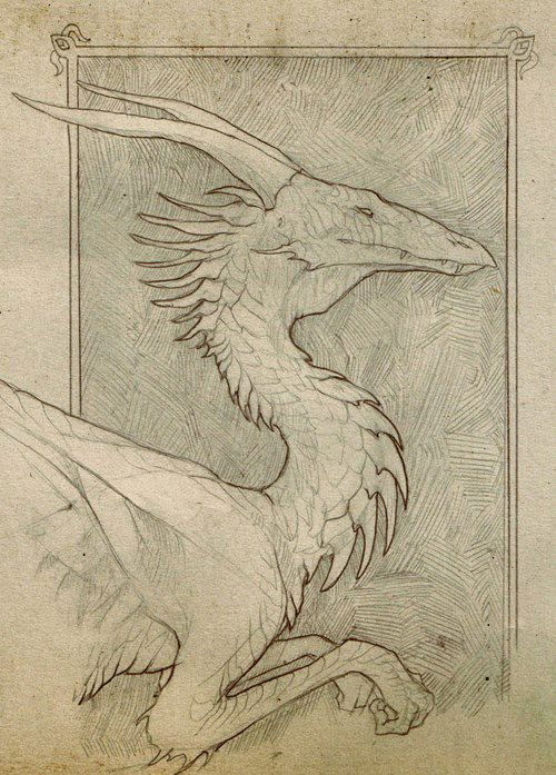 Dragon - beautifull pencil sketch