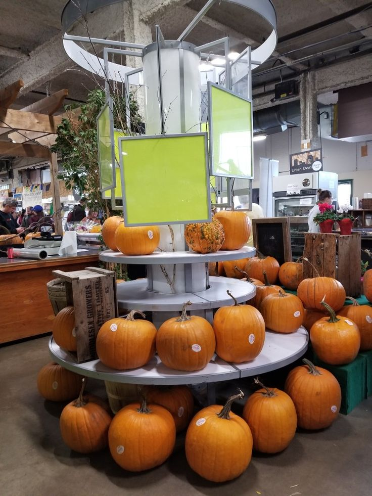 Huge pumpkins displayed at a market in London Ontario