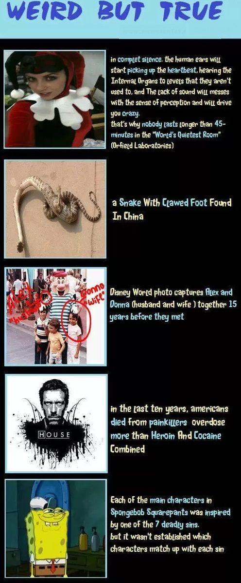 Weird but true facts
