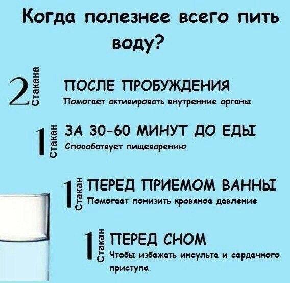 5916975_otaapt08sAI (568x554, 63Kb)