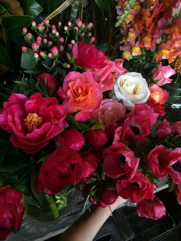 We love late spring because it heralds the coming of peonies and heirloom roses!