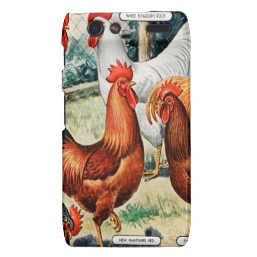 Vintage Chickens Roosters For Sale Catalog Ad