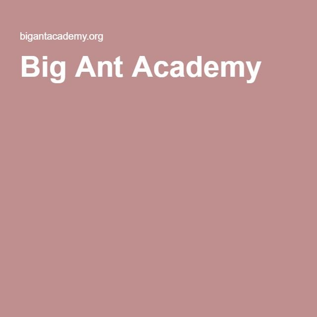 Big Ant Academy