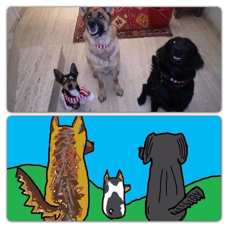 Mis perritos!!!