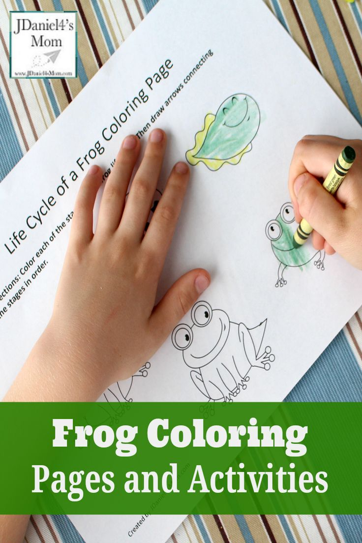 25 best ideas about Frog Coloring