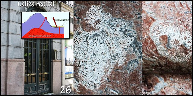 Naturarchives. Geology. Instituto Bidebieta. Plaza pinares 2 (portal). Tipo de roca: Roca sedimentaria.  Tipo de roca: Caliza recifal (Vizcaya y Guipúzcoa). Corales típicos las calizas Urgonianas (Cretácico inferior) de San Marcos en Rentería.