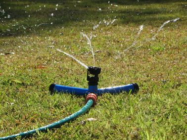 Wobble - Tea (Water Efficient Sprinklers) will feature at the 2014 Newcastle Home Show.