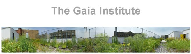 Offering ecological engineering and restoration knowledge, they provide Gaiasoil, specialized for green roofing systems.  http://thegaiainstitute.org/
