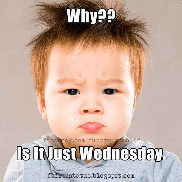 Funny Meme Wednesday : Best happy wednesday quotes images on pinterest