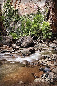 River of Dreams by Evgeniya Lystsova  Narrows in Zion National Park, Utah, USA #EvgeniyaLystsovaFineArtPhotography #Landscape #River #Mountains #Rocks #Zion #Utah #TravePhotography #FineArtPrints #HomeDecor #InteriorDesign #ArtForHome