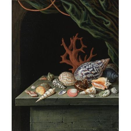 Manner of Antoine Berjon, Possibly circa 1900, Still Life with Shells and Coral, resting on a stone ledge. photo Sotheby's