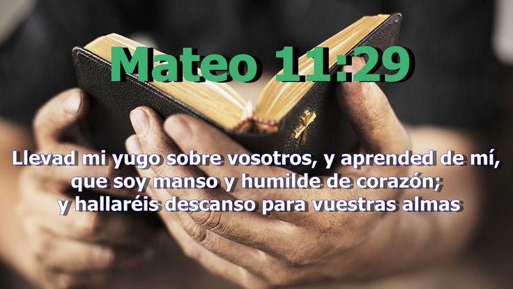 """Según el diccionario griego-español la palabra griega para discípulo es """"mathetes"""" que significa, aprendiz. De allí que denote uno que aprende de otro. Jesús quiere que aprendamos de el. (""""Llevad mi yugo sobre vosotros, y aprended de mí, que soy manso y humilde de corazón; y hallaréis descanso para vuestras almas"""" Mateo 11:29)"""