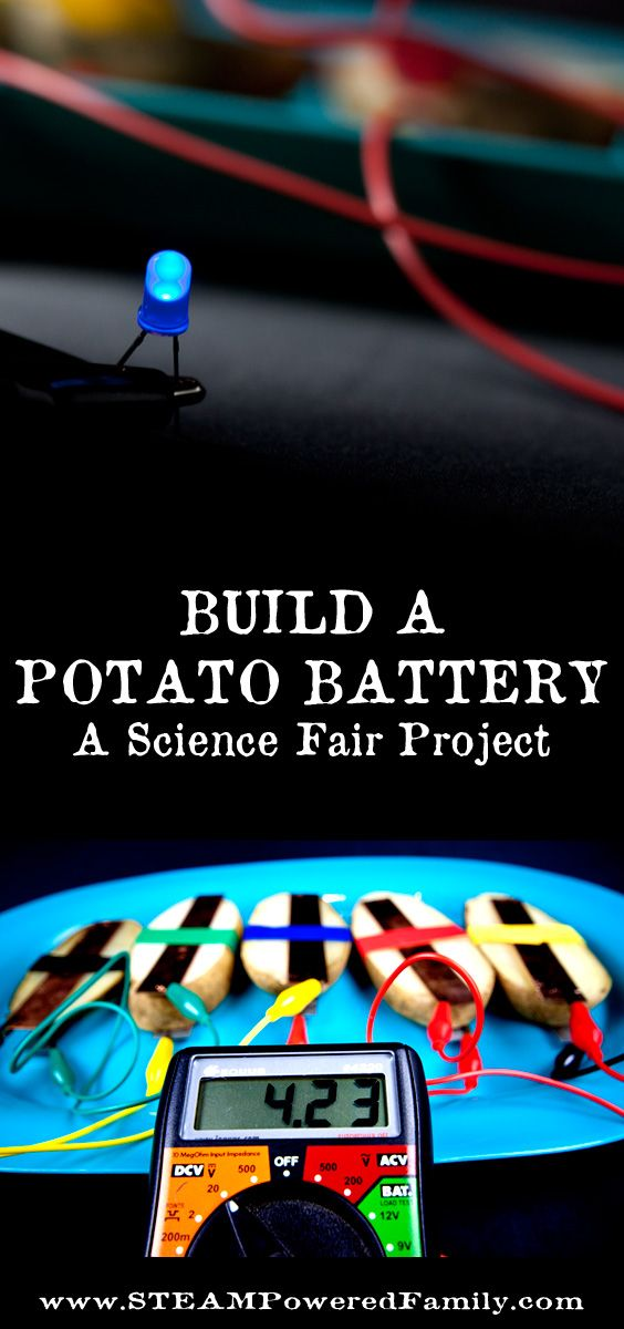 Build a potato battery that powers a light bulb. A STEM activity and science fair project exploring circuits and energy production.  via @steampoweredfam
