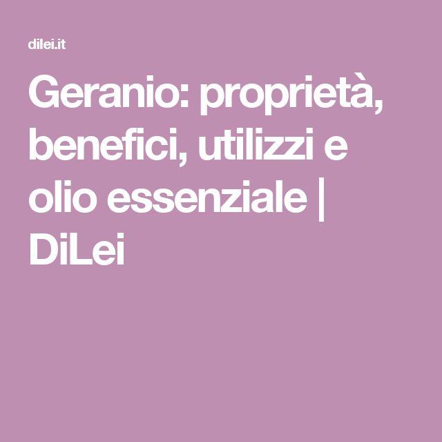 Geranio: proprietà, benefici, utilizzi e olio essenziale | DiLei