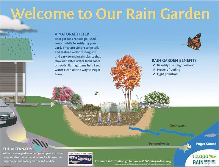 27 Best Rain Garden Educational Signs Images On Pinterest