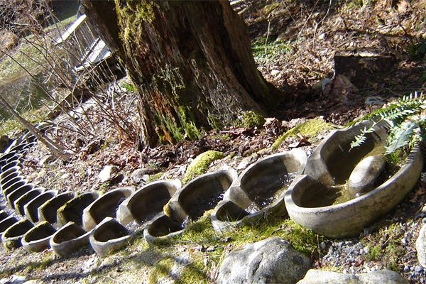 Water flow forms - healing water on biodynamic farm