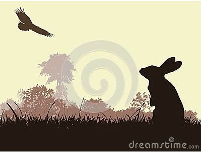 The 10 best dragon and rabbit images on pinterest bunnies dragon interesting idea with the grass and background trees though i think ill thecheapjerseys Gallery