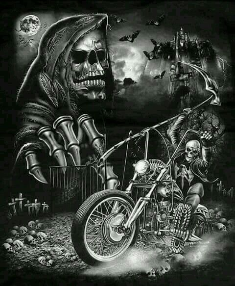 768 Best Motorcycle Images On Pinterest  Motorcycle Girls -8235