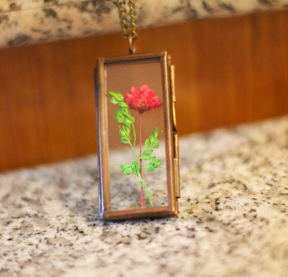 104 Best Images About Terraria On Pinterest: 46 Best Terrariums And Nature Inspired Jewelry Images On