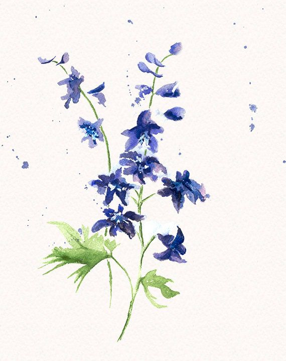 Delphinium Original Watercolor Painting by wrensroost on Etsy, $30.00