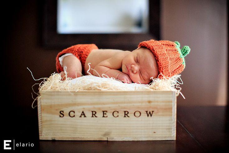 gemma, newborn pumpkin, halloween baby #newborn #halloween #pumpkin #halloweenbaby