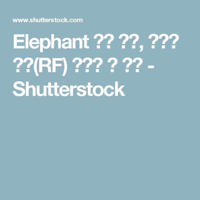 Elephant 스톡 사진, 로열티 프리(RF) 이미지 및 벡터 - Shutterstock