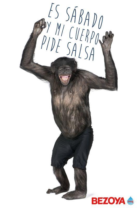 Es sábado y mi cuerpo pide salsa. #bezoya, agua, mineral, natural, mono, fiesta, fin de semana