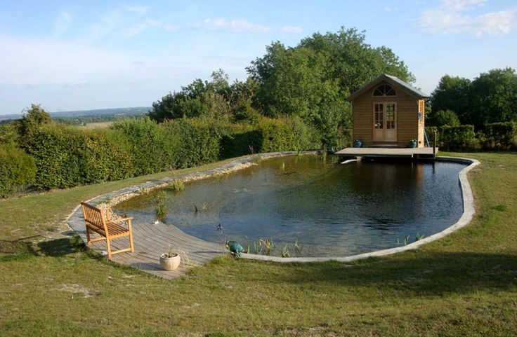 1000 ideas about swimming pool pond on pinterest - How to make a natural swimming pool ...