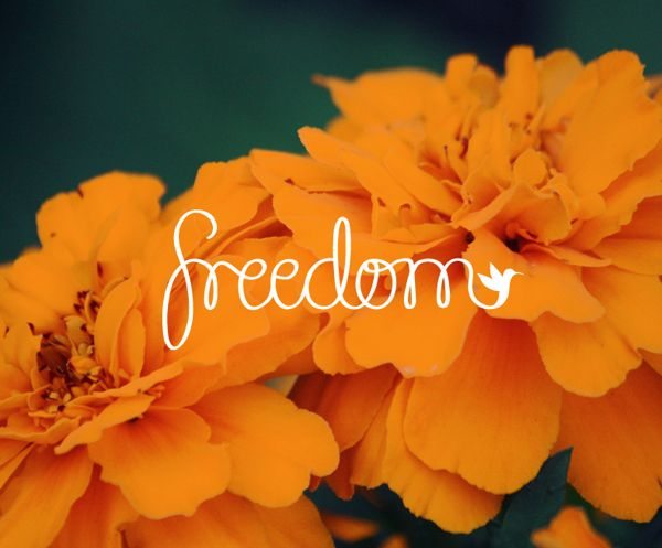 Freedom by Blake Fritz, via Behance