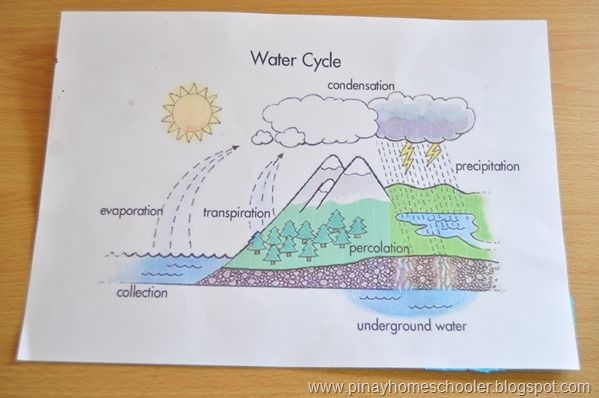 56 best images about 4th grade science water cycle on