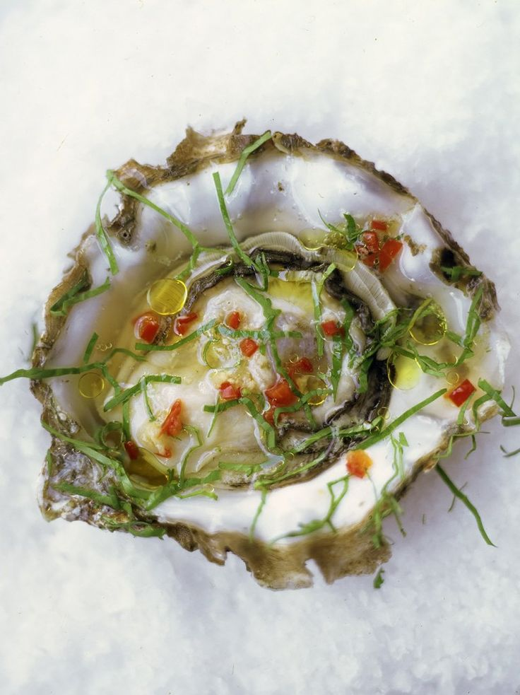 It looks like the contents of a fucking petri dish! *retch* Oysters with chilli, ginger and rice wine vinegar
