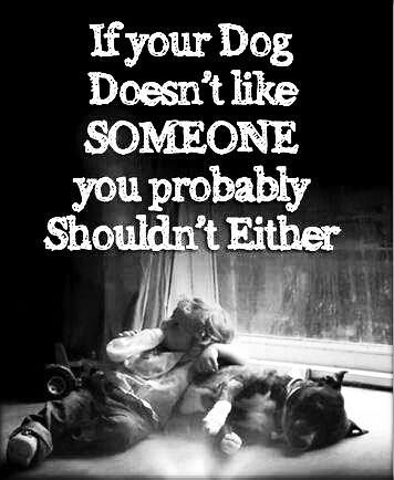 true...............