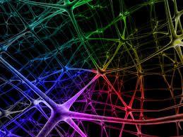 neural network - Google Search