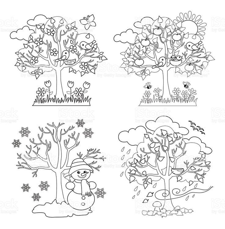 Four Seasons Trees Clipart And Vector With Spring Summer Fall And Four Seasons Tree Coloring Page Tree Art