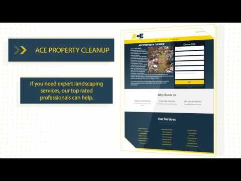 (2) Professional Property Cleanup - YouTube