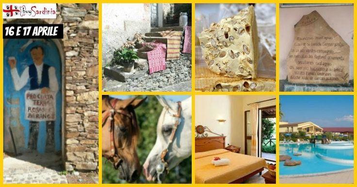 #buySardinia organizza #gita in #PullmanDaCagliari per il #PonteDiPasqua, 2 gg in pieno relax nel bellissimo Resort #HorseCountry di #Arborea e a #Pasquetta tutti a #Tonara per la rinomata #SagraDelTorrone. Info: 3336749958 infobuysardinia@gmail.com