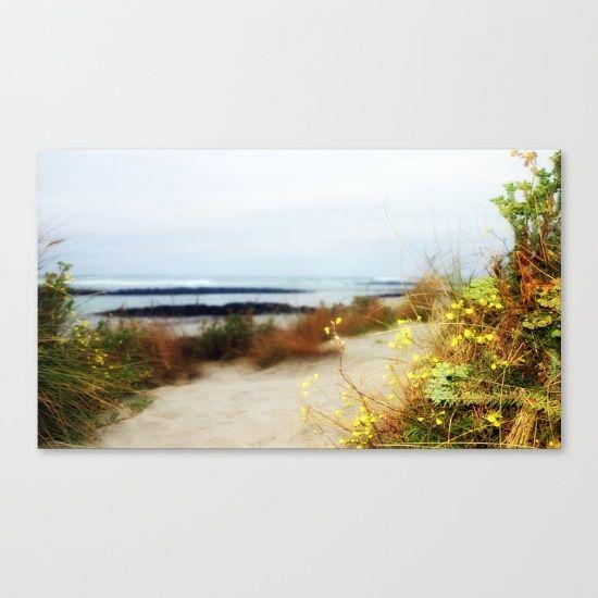Seascape, Wildflowers, Dawn, Landscape, Beach, Path, Light, Australia.