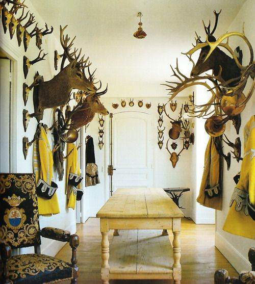 No Head Sute: 37 Best Images About Trophy Room On Pinterest
