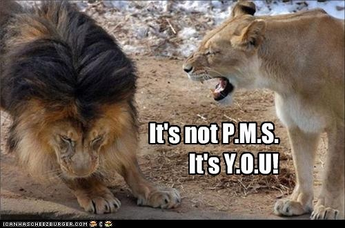 pms: Animal Captions, Jungles, Big Cat Rescue, The Queen, It You, Funny Animal, Male Lion, National Zoos, Bigcat