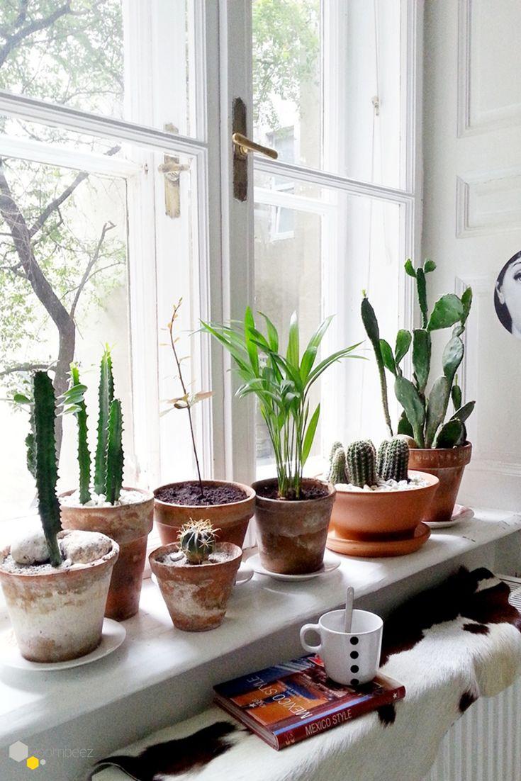 #Zimmerpflanzen #Fensterbank #Inspiration Anlässlich des Valentinstags stellt Euch Bloggerin Bianca von Wohnlust in einem Liebesbrief an Interior-Träume die zauberhafte Wohnung von Bloggerin Anikó vor ➯ Auf ROOMBEEZ zeigen wir Euch alle Bilder der Homestory!