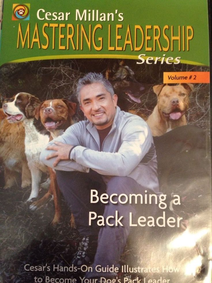 mastering teacher leadership The four aspects of teacher as leaders in education to bring change:  cases  mastering teacher leadership abstract this case is about a multistage,.