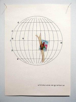 last-migratory-bird-2004-stamp-ink-color-pencil-on-paper-34x25cms-300x400.jpg (300×400)